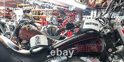 Harley Evo Gold Bar Et Bouclier Softail Fxst Flstf Dossier Passager Sissybar